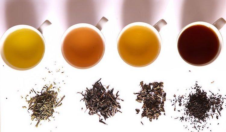 1,000 cups of tea